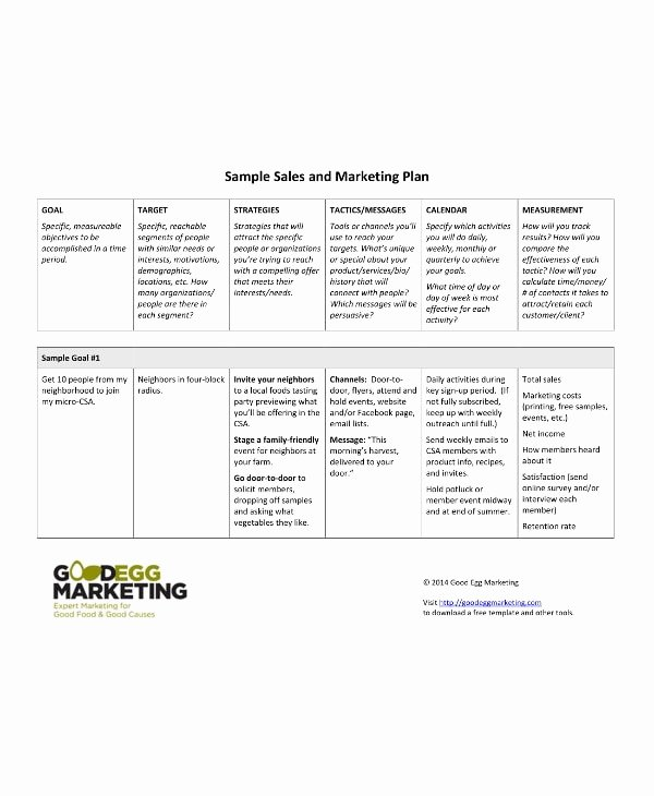 90 Day Marketing Plan Template Lovely 11 90 Day Sales Plan Examples Pdf Docs