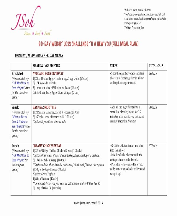 90 Day Work Plan Template Awesome 9 90 Day Workout Plan Templates Pdf Word