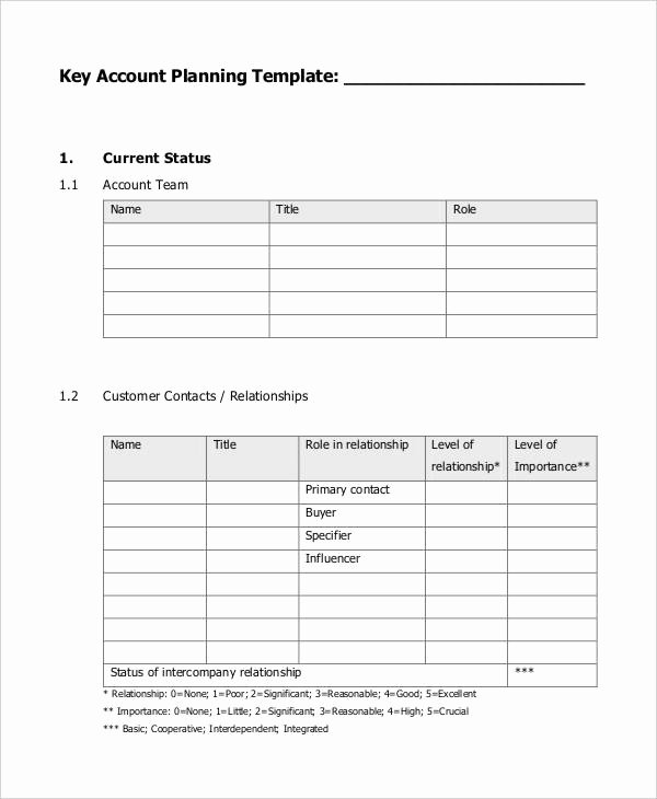 Account Management Plan Template Awesome 7 Strategic Account Plan Templates Free Sample Example