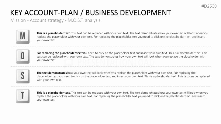Account Management Plan Template Best Of Account Management Business Plan