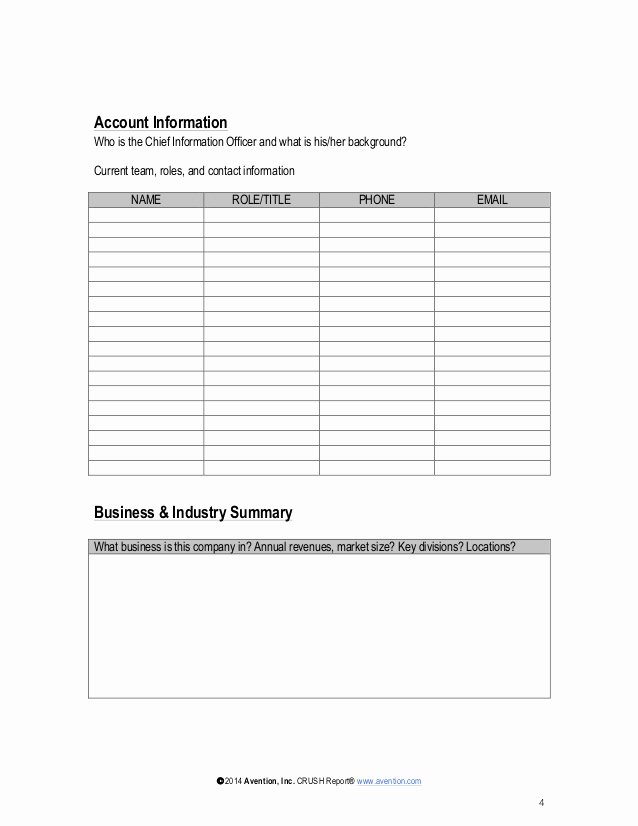 Account Management Plan Template Inspirational Strategic Account Plan Template