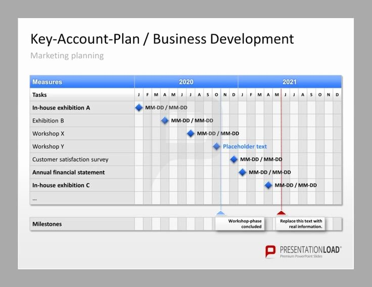 Account Plan Template Ppt Beautiful Account Plan Template Ppt Amsauh