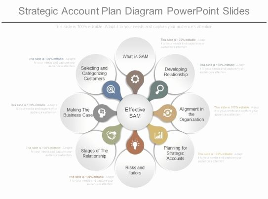 Account Plan Template Ppt Best Of App Strategic Account Plan Diagram Powerpoint Slides