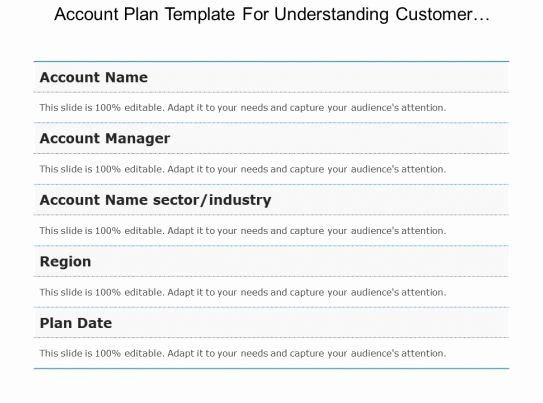 Account Plan Template Ppt Elegant Account Plan Template for Understanding Customer Business