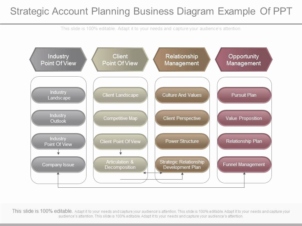 Account Plan Template Ppt Elegant Apt Strategic Account Planning Business Diagram Example