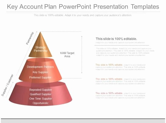 Account Plan Template Ppt Lovely Custom Key Account Plan Powerpoint Presentation Templates