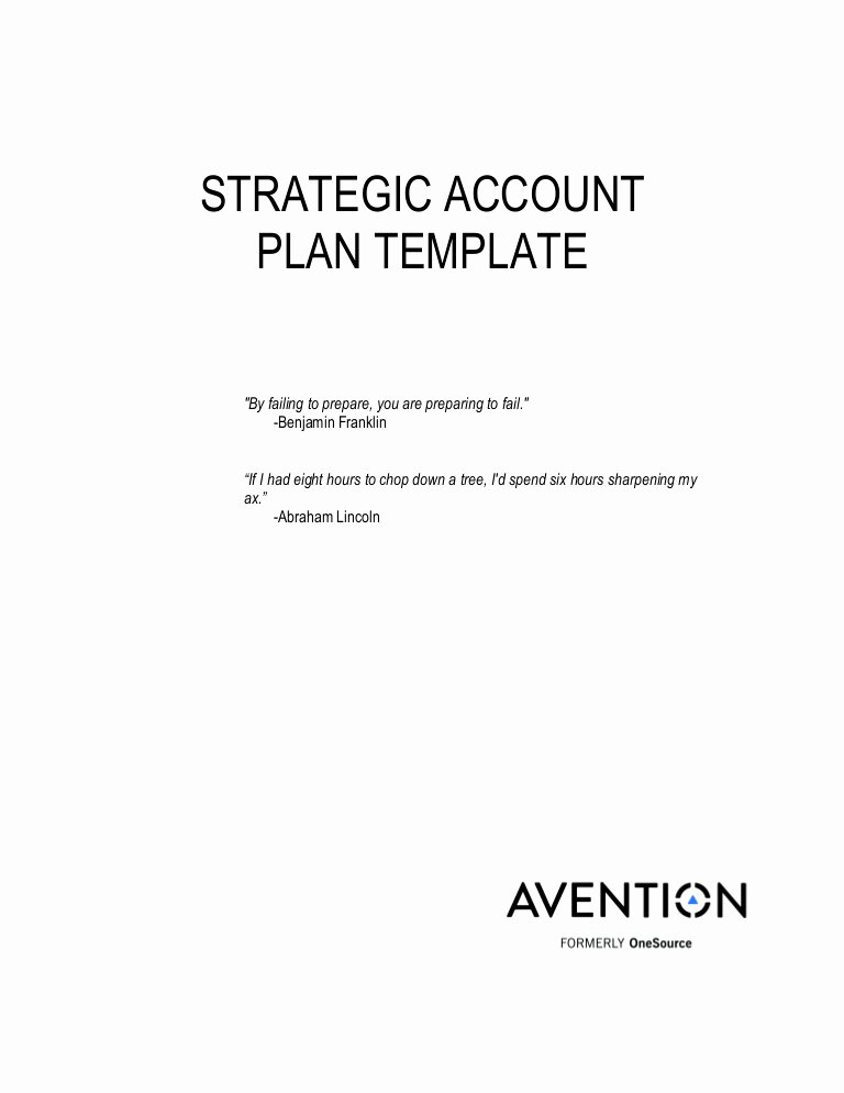 Account Plan Template Ppt Lovely Strategic Account Plan Template