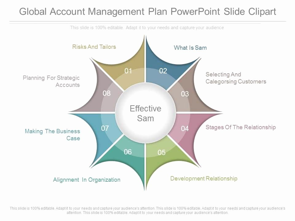 Account Plan Template Ppt Luxury App Global Account Management Plan Powerpoint Slide