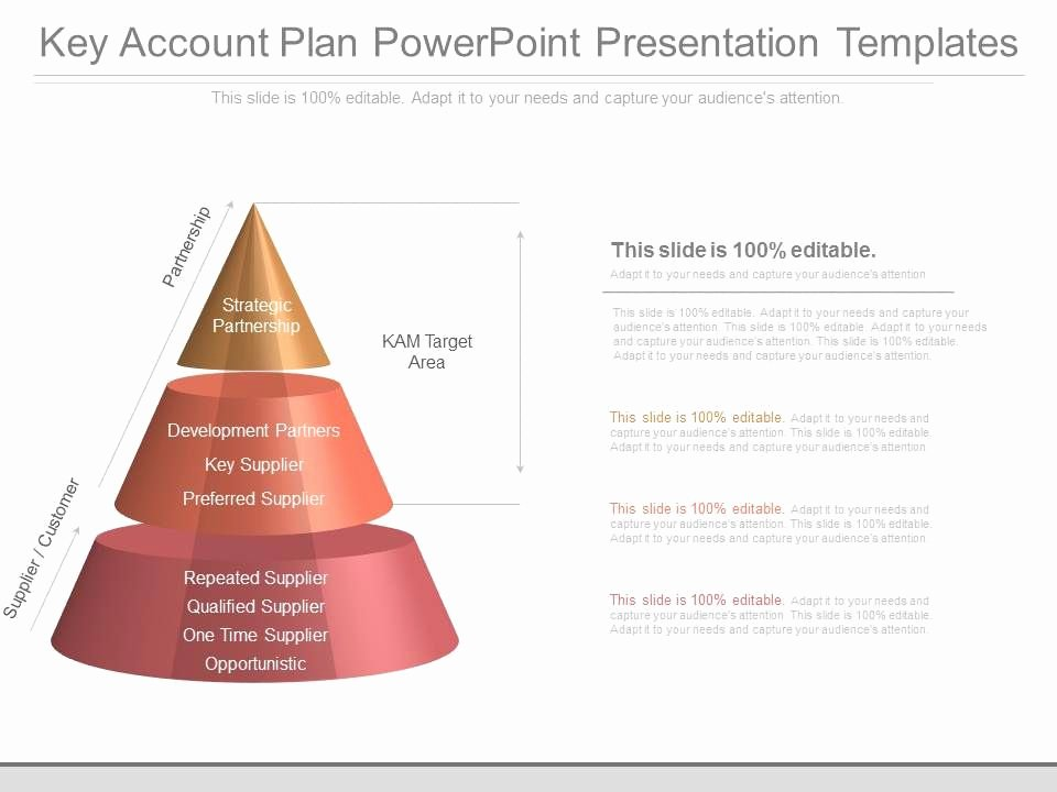Account Plan Template Ppt Luxury Custom Key Account Plan Powerpoint Presentation Templates