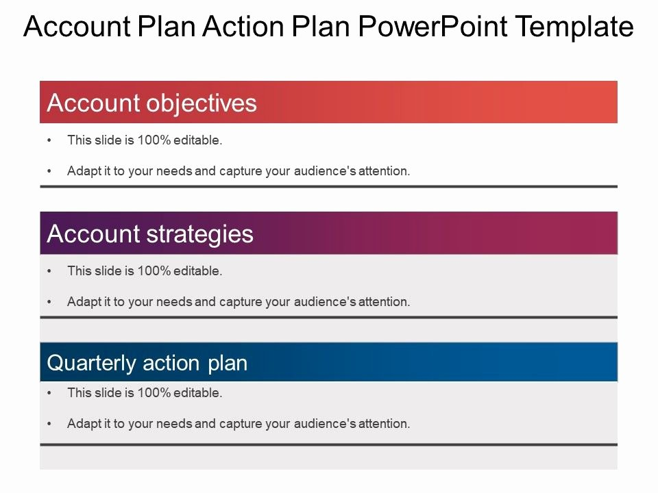 Account Plan Template Ppt New Account Plan Action Plan Powerpoint Template