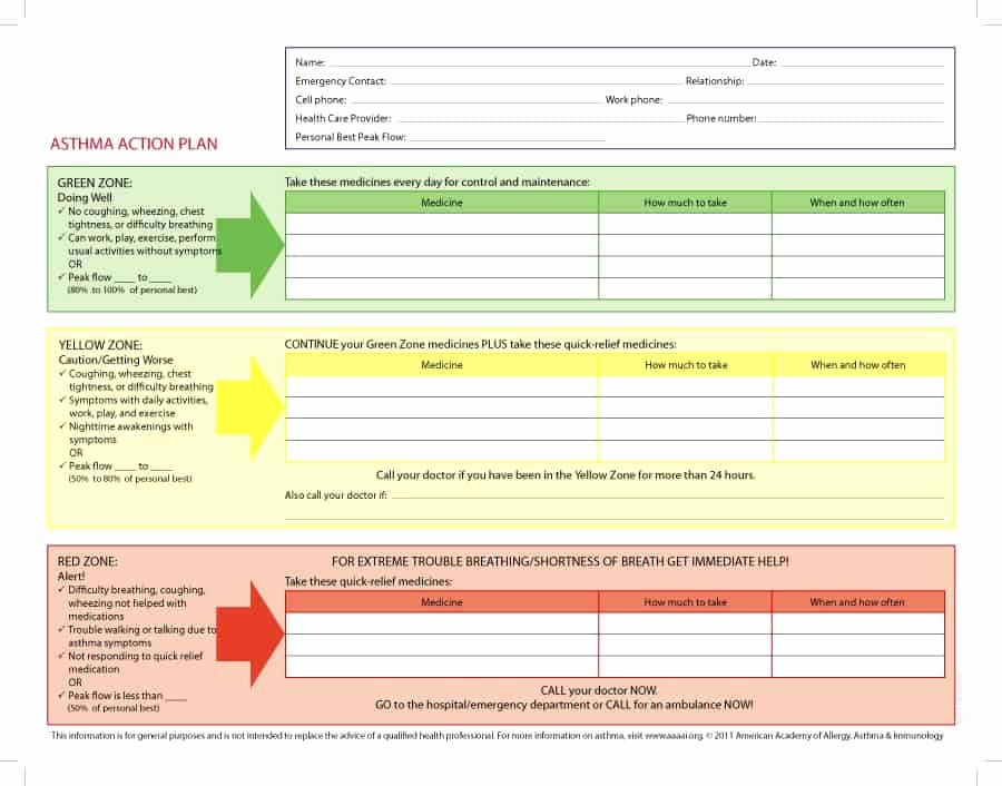 Action Planning Template Excel Unique 11 Free Action Plan Templates Word Excel formats