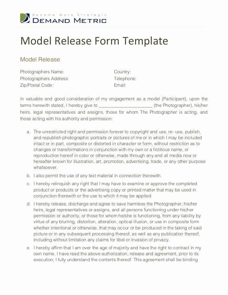 Artwork Release form Template Best Of Model Release form Template