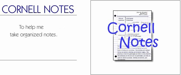 Avid Lesson Plan Template Luxury the Learning toolbox Cornell Notes