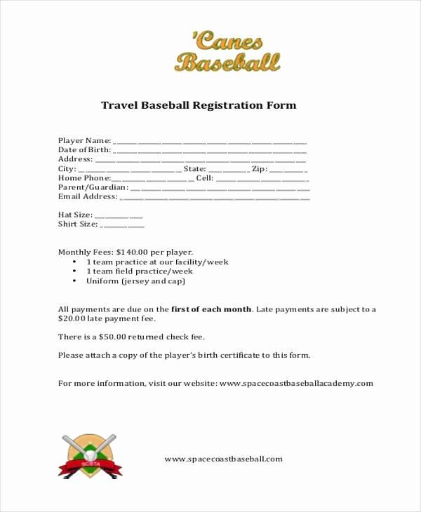 Baseball Registration form Template Inspirational Free 38 Registration form Templates