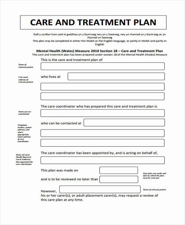 Behavioral Health Treatment Plan Template Luxury 30 Free Treatment Plan Templates