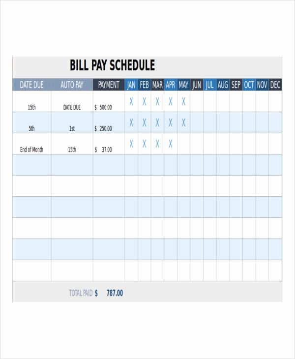 Bill Payment Schedule Template Excel Inspirational Bill Payment Schedule Template 13 Free Word Pdf format