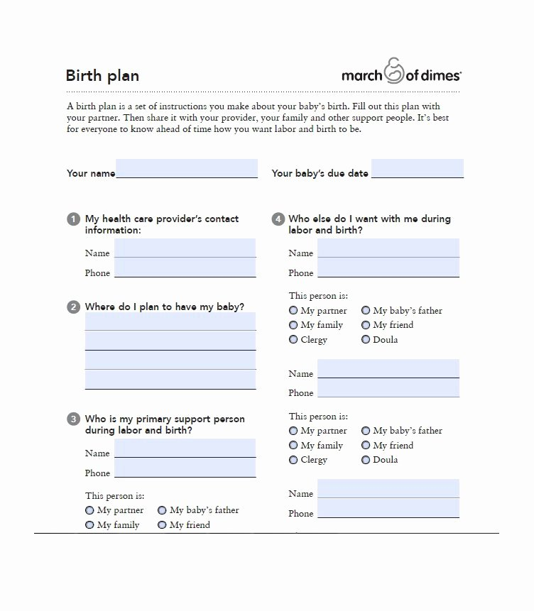 Birth Plan Template Word Inspirational 47 Printable Birth Plan Templates [birth Plan Checklist