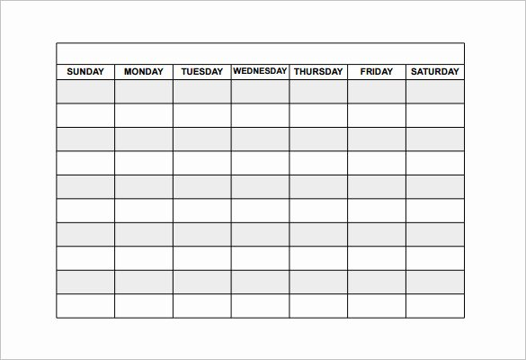 Blank Daily Schedule Template Unique Free Schedule Template