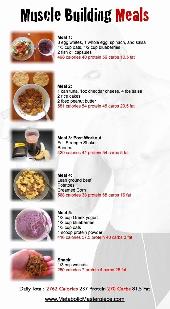 """Bodybuilding Meal Planner Template Unique Search Results for """"muscle Building Eating Plan"""