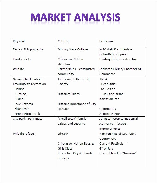 Business Analysis Plan Template Beautiful Free 17 Market Analysis In Pdf Google Docs