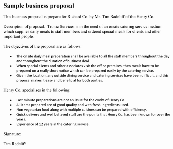 Business Proposal format Template Fresh Business Proposal Template