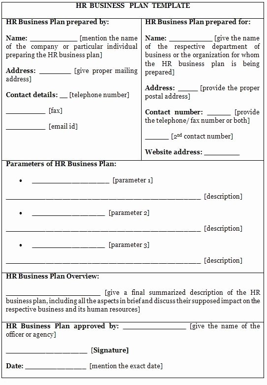 Business Proposal format Template Lovely Business Plan Template