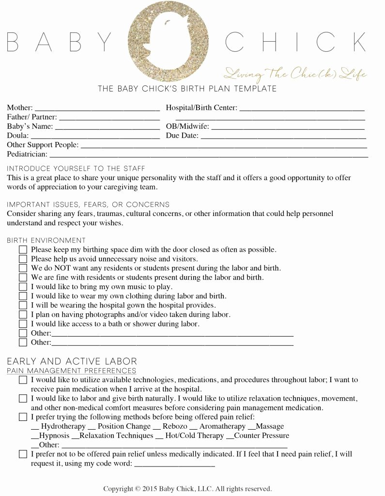 C Section Birth Plan Template Elegant Creating Your Perfect Birth Plan