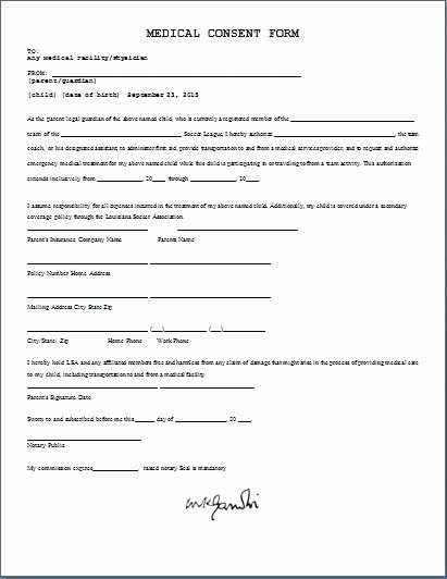 Child Travel Consent form Template Elegant Printable Ms Word Parent Consent forms