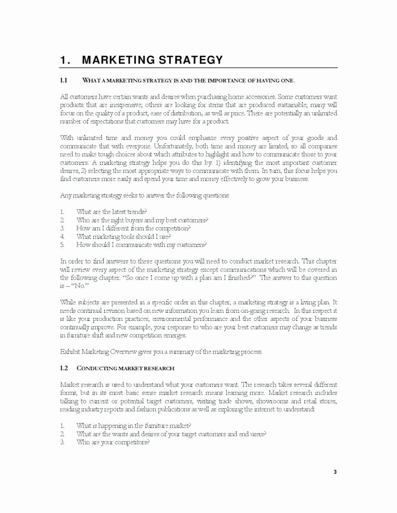 Clothing Line Business Plan Template Fresh 6 Marketing Policy Template and Examples Pdf Word