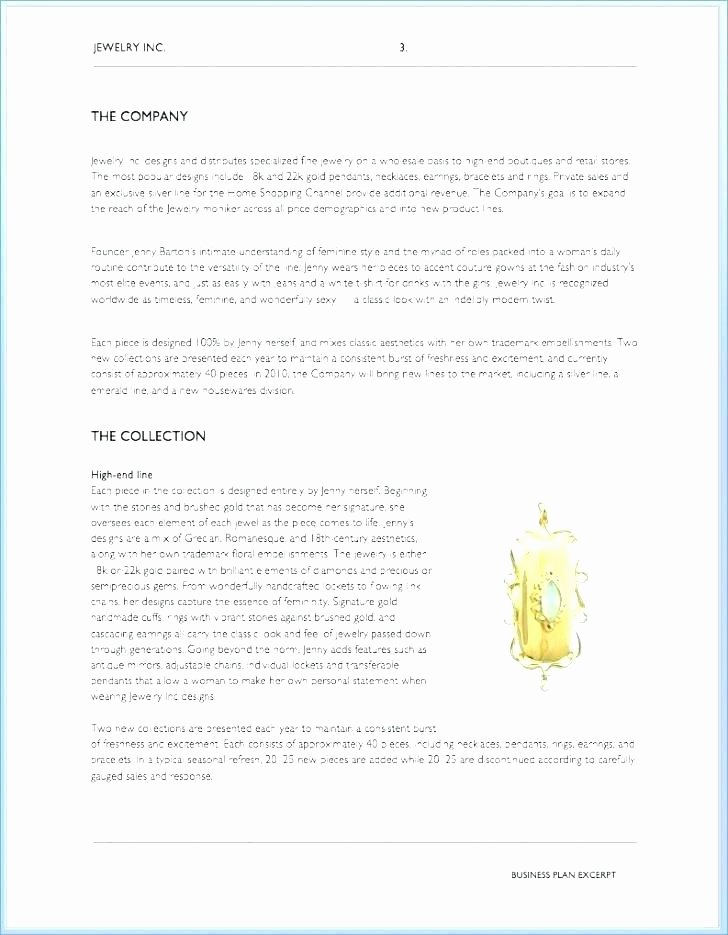 Clothing Line Business Plan Template Fresh Fashion Boutique Business Plan Examples