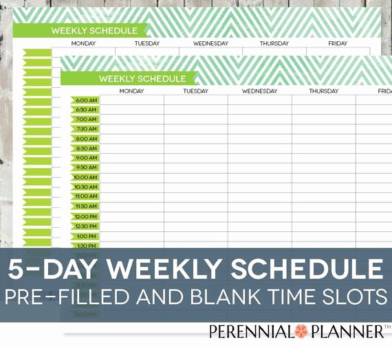 Daily Time Schedule Template Fresh Daily Schedule Printable Editable Times Half Hourly Weekly
