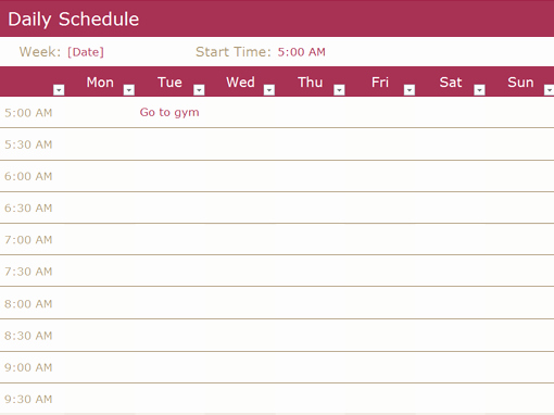 Daily Time Schedule Template New Chore Schedule Fice Templates