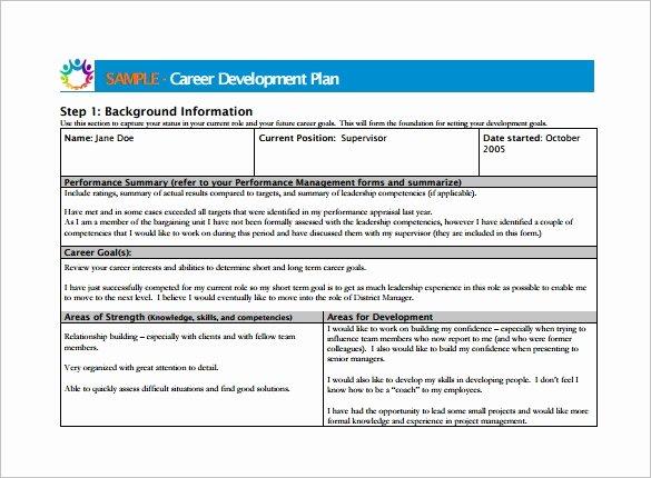 Development Plan Template Word Elegant 12 Career Development Plan Templates Free Word Pdf