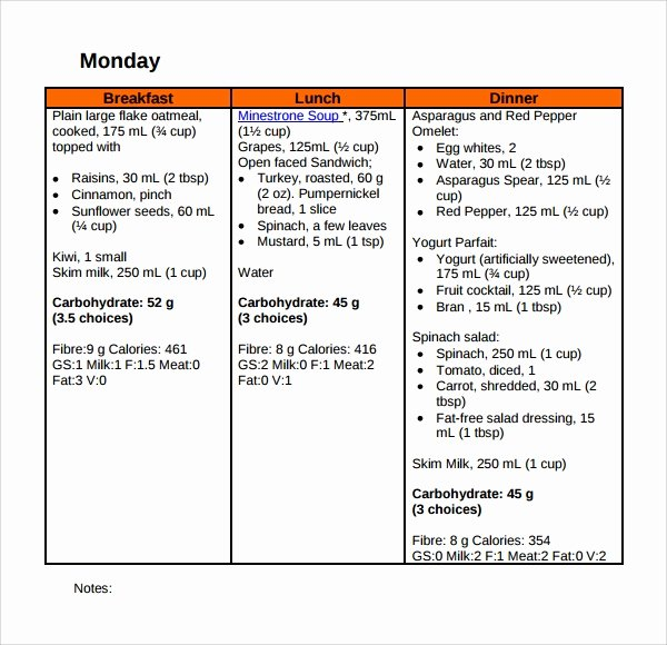 Diabetes Meal Plan Template Elegant Sample Diet Plan Template 9 Free Documents In Pdf Word