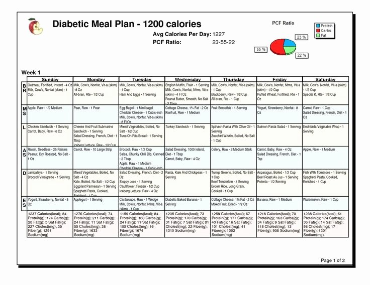 Diabetes Meal Plan Template Lovely B4df3abdfdfd5e6f78a2ad133c2 1 200×927 Pixels