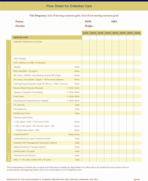 Diabetes Meal Plan Template Luxury Diabetes Care Plan Template Diet Plan