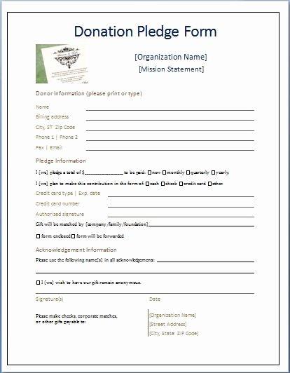 Donation form Template Free Fresh Sample Donation Pledge form