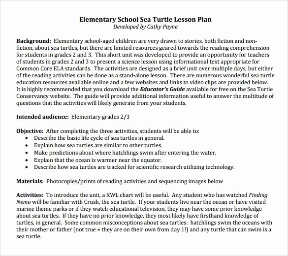 Elementary School Lesson Plans Template Best Of Sample Elementary Lesson Plan 9 Documents In Pdf