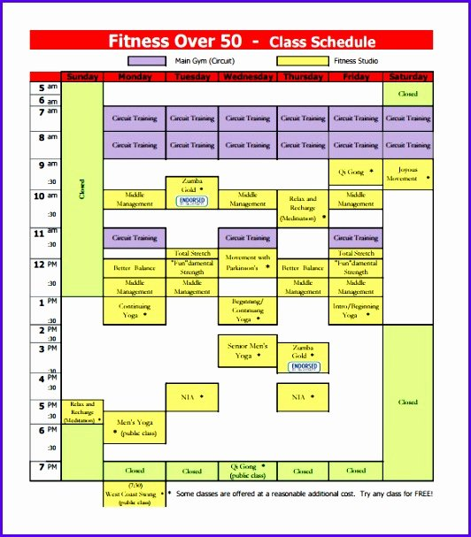Excel Class Schedule Template Beautiful 6 Excel Class Schedule Template Exceltemplates