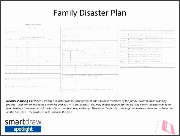 Family Disaster Plan Template Elegant 9 Family Emergency Plan Template Sampletemplatess