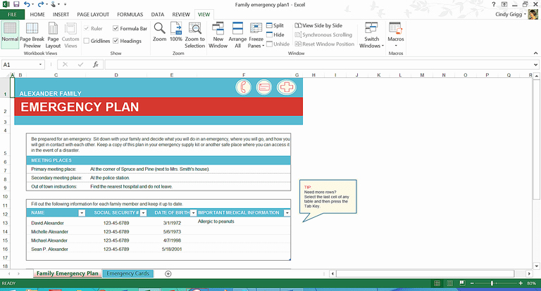 Family Disaster Plan Template Fresh organization Boost Free Microsoft Word Family Templates