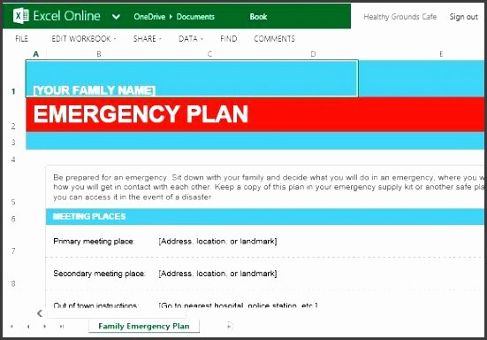 Family Emergency Preparedness Plan Template Unique 7 Family Emergency Plan Editable Sampletemplatess