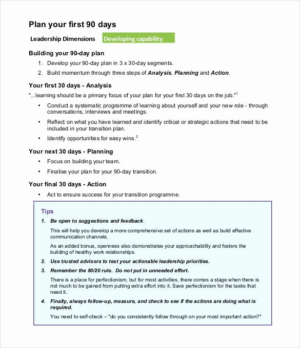 First 90 Days Plan Template Best Of 37 30 60 90 Day Plan Templates Word Pages Pdf Google