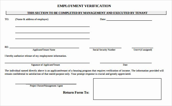 Free Employee Verification form Template Inspirational 9 Employment Verification form Download for Free