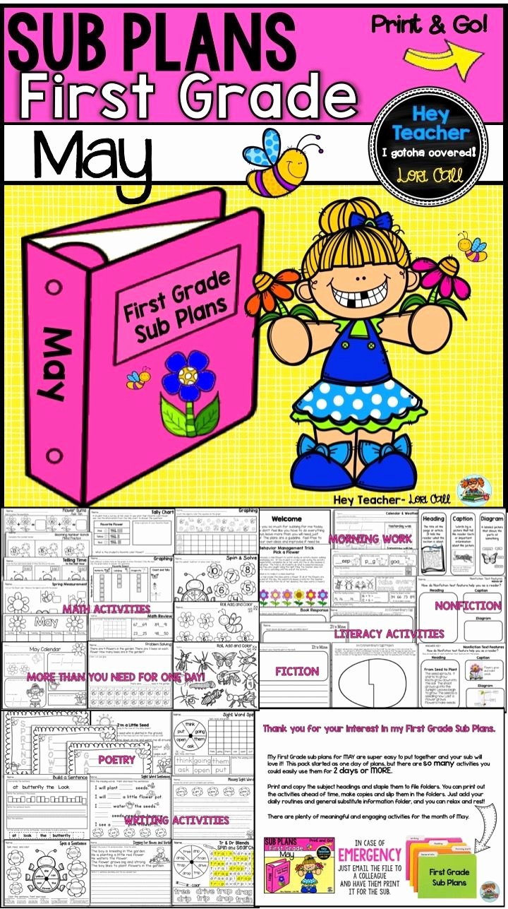 Go Math Lesson Plan Template Luxury First Grade Sub Plans May Spring