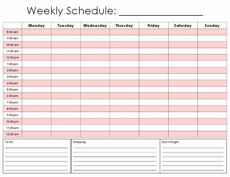 Half Hour Schedule Template Beautiful 28 Of Half Hourly Daily Planner Template