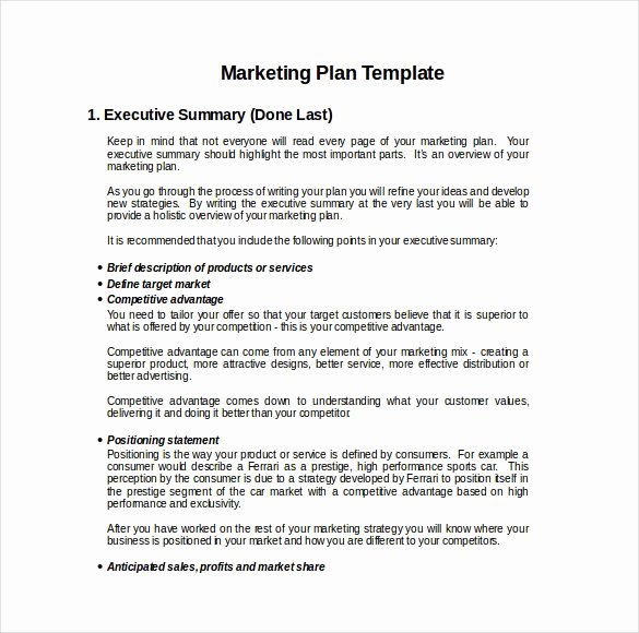 Hotel Marketing Plan Template Inspirational 9 Financial Adviser Marketing Plan Examples Pdf