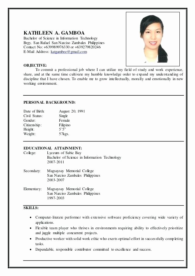 Information Technology Resume Template Inspirational Information Technology Resume – Wikirian