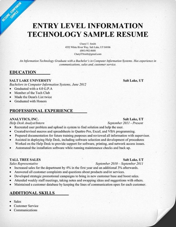 Information Technology Resume Template Luxury Resume Technology and Entry Level On Pinterest