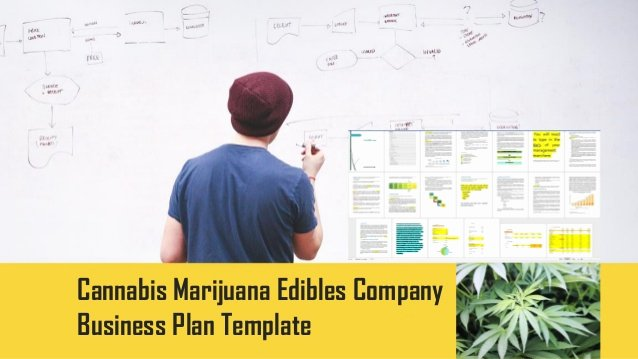 Medical Marijuana Business Plan Template Awesome Cannabis Edibles Pany Business Plan Template